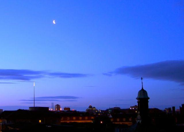 Dawn with Blackbirds 1