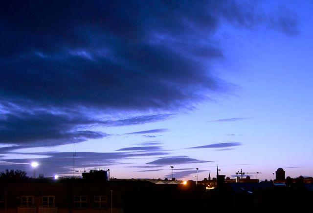 Dawn with Blackbirds 2