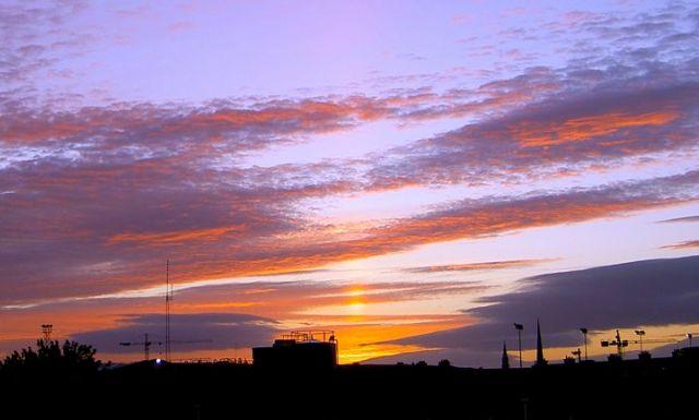 Sunrise with Blackbirds